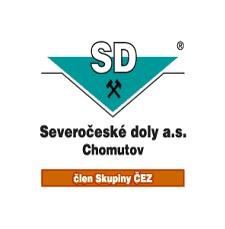 dolycv.jpg